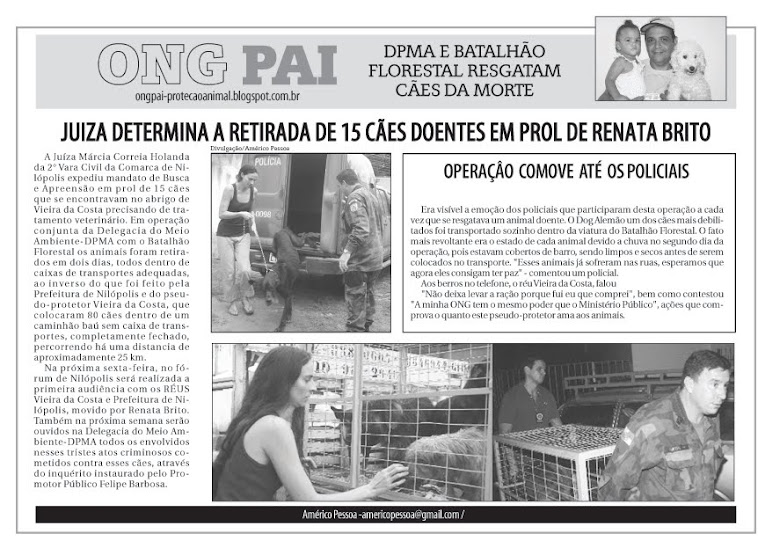 Resgate cães de Renata Brito