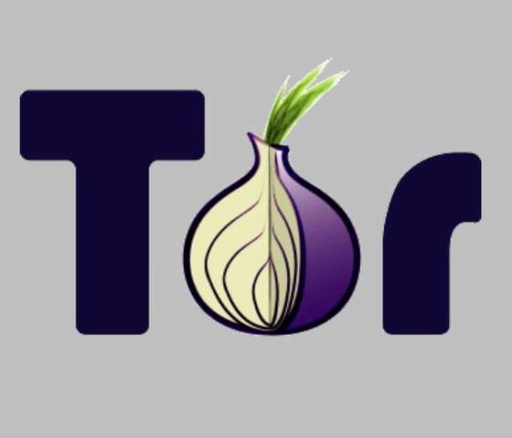 http://2.bp.blogspot.com/-c-RiYFcVt_M/Ti1ppCJILLI/AAAAAAAABL4/vzih7dotIAI/s1600/Go-Online-without-Getting-Snooped-Tor-The-Onion-.jpg