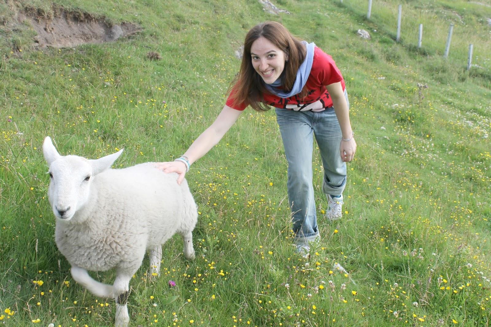Stupore quotidiano la leggenda delle pecore di scozia - La pagina della colorazione delle pecore smarrite ...