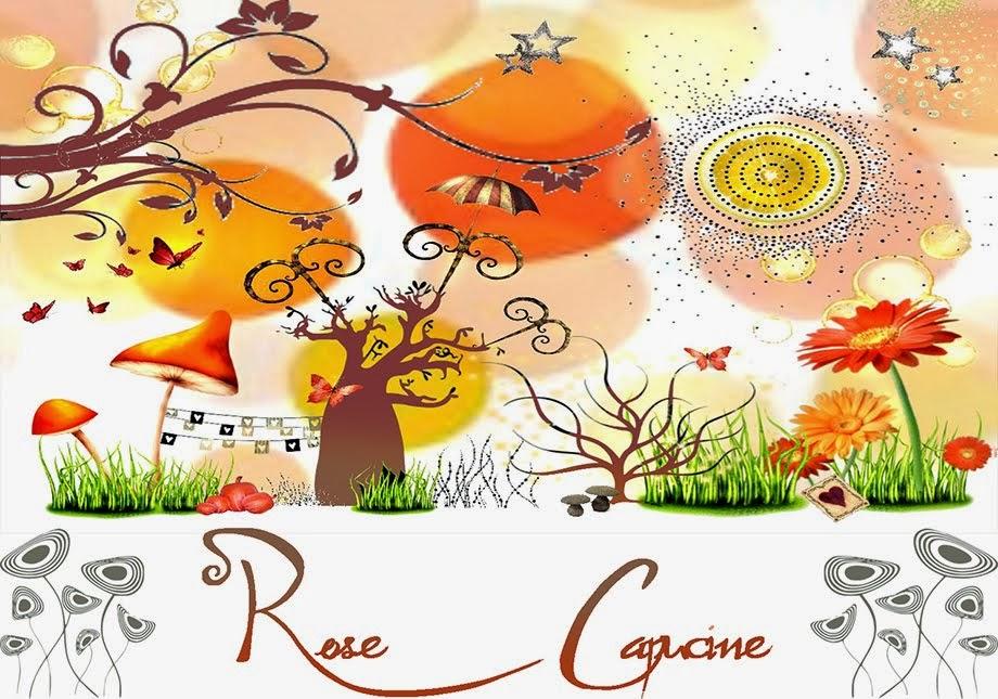Rose Capucine