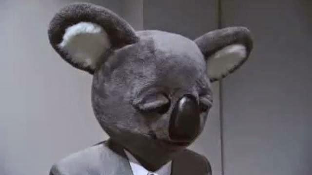 Executive Koala - un koala humanoid est accusé de meutre