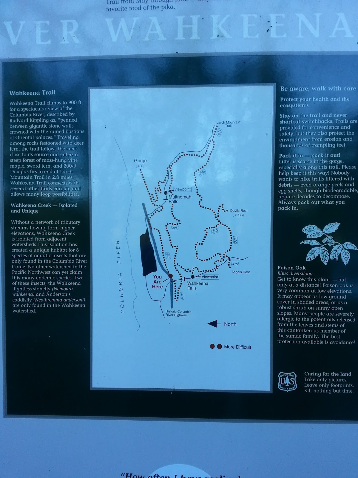 Wahkeena Falls The Gorge