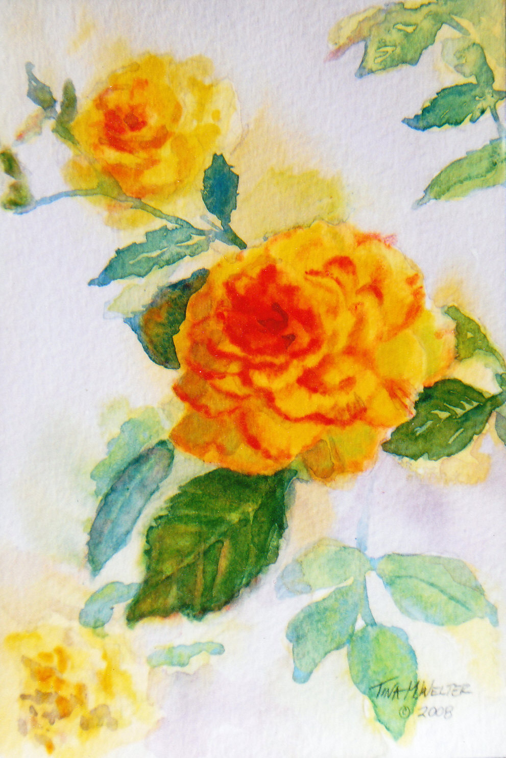 "7""x 5"" watercolor on paper, copyright 2008 Tina M. Welter  Watercolor painting of yellow mini-roses"