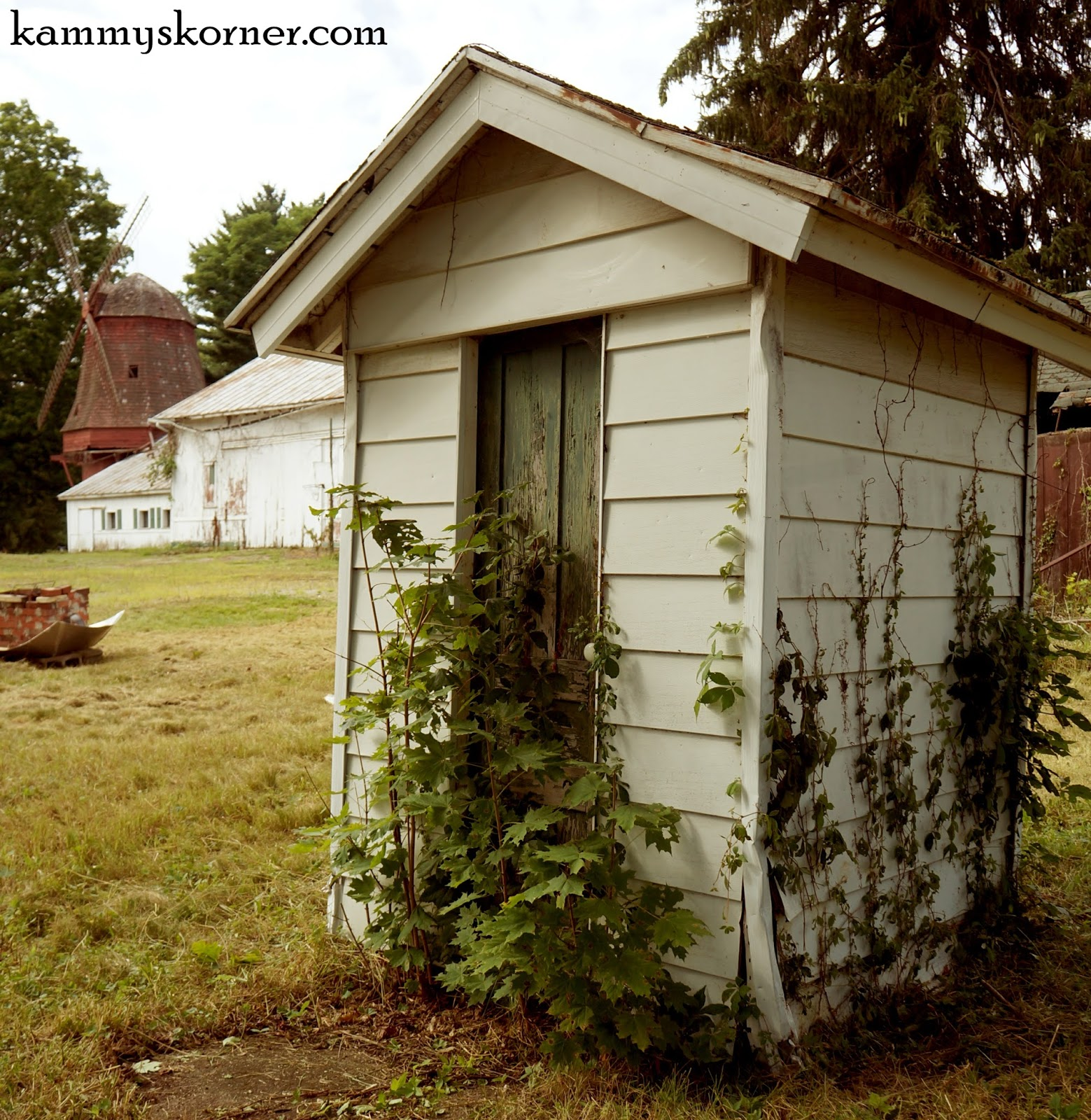 Kammy's Korner: We kicked in the outhouse door... on outhouse foam, outhouse signs, outhouse fabric, outhouse silhouette, outhouse prints, outhouse ornaments, outhouse stamps, outhouse decorations, outhouse kits, outhouse posters, outhouse theme decor,