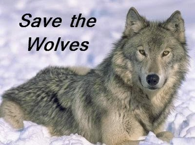 PROTECT WOLVES