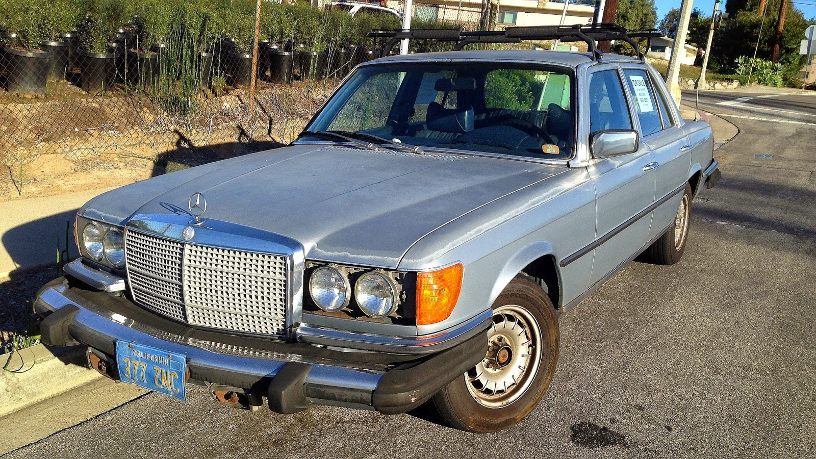 Daily turismo 1k roadkill 1980 mercedes benz 300sd w116 for 1980 mercedes benz 300sd