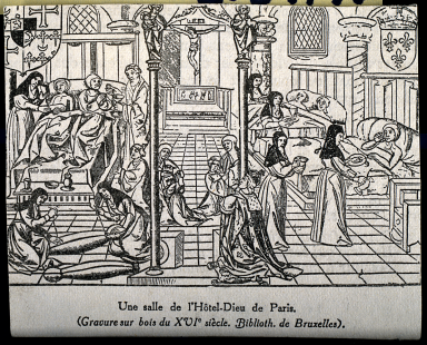 the knowledge of medicine during the elizabethan times During this time the most common cause of disease was overpopulation, especially in cities, and the unsanitary conditions people lived in (andrews 56) in the elizabethan era they studied ancient medicine, and the ideas of hypocrites and galen.