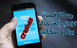 skype crashes