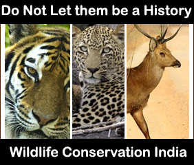 CONSERVATION OF WILDLIFE IN INDIA EPUB DOWNLOAD