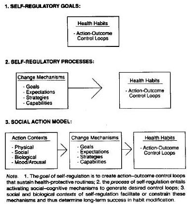 social action theory Advertisements: elements of social action-talcott parsons sociology is the study of man's behaviour in society  thus any theory of social behaviour must take .