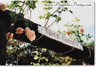 Rose Garden - Punjabi Poetry