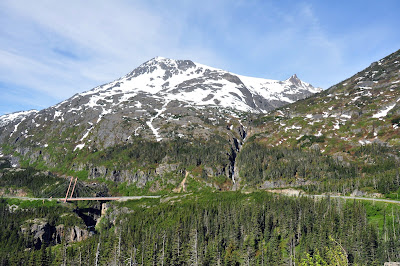 Alaska Adventures: Skagway, The White Pass and Yukon Route Railway, and bears, oh my!