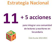 Estrategia Nacional 11+5