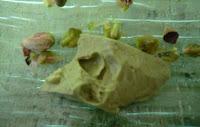 Verrine au thé vert matcha et aux pistaches sans lactose et sans gluten