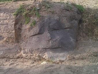 Aneh, Batu Ini Mirip Kepala Bayi!