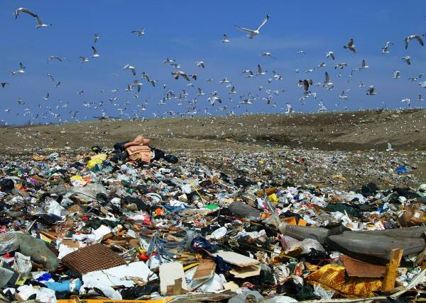 Reduce The Impacts of Landfills