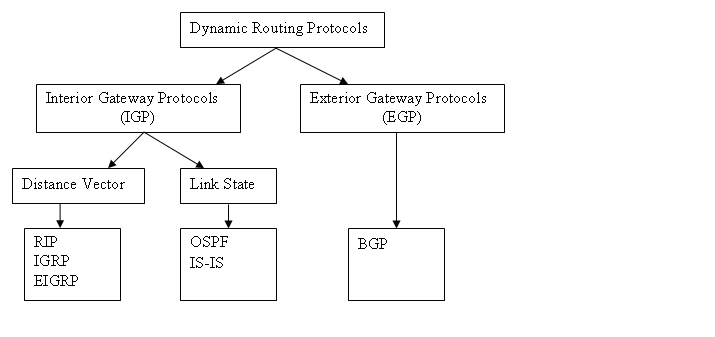 Learn Ccna Dynamic Routing Protocols