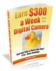 Discover How To Make Hundreds of Extra Dollars Every Month ... With Your Digital Camera