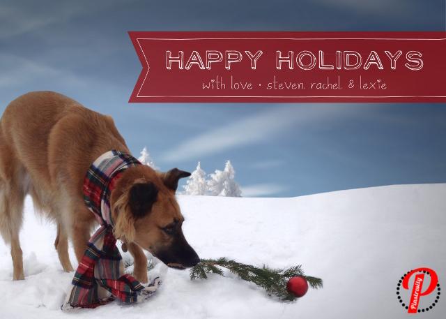Pinstrosity: Christmas Card Creativity