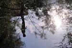 A contatto con la natura: La pesca