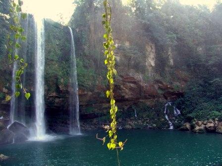 Cascada de Misol-Ha (Foto de Luis Espejel, lic. CC)
