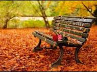 Καλωσόρισες φθινόπωρο