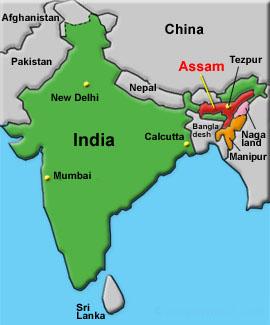Assam Tourism Assam Map Assam Tourism Assam Map