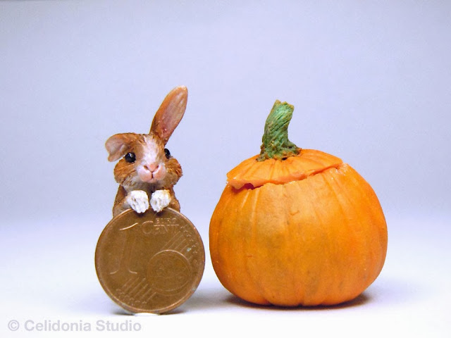 Miniature Rabbit in Pumpkin