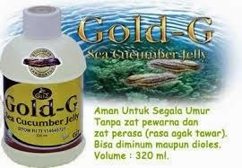 obat herbal penyakit maag kronis