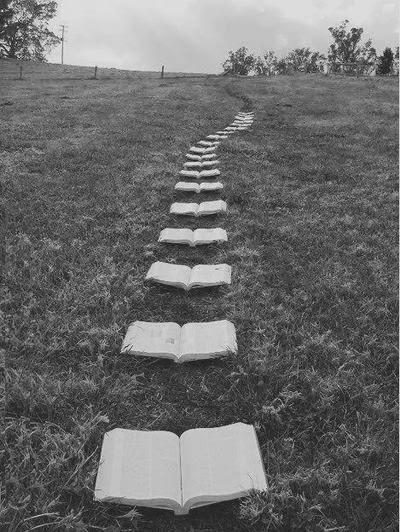 Caminho de Livros