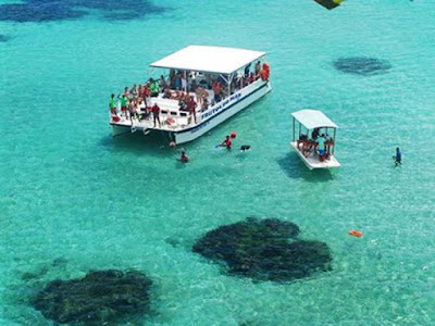 Maragogi Swimming Tourism, Brazil
