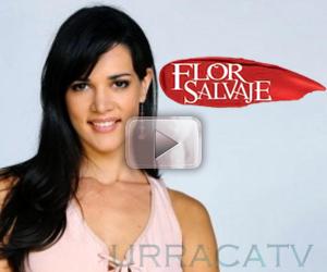 Avances Flor Salvaje Capitulo 116 Televisa Gratis