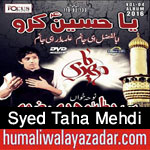 http://www.humaliwalayazadar.com/2015/10/syed-taha-mehdi-nohay-2016.html