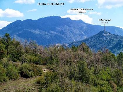 La Serra de Bellmunt i més a prop el Serrat Alt des de la zona de Comerma