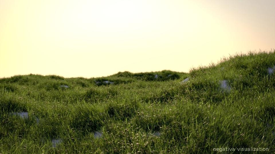http://2.bp.blogspot.com/-c5W-yAt2Ujg/Tw7JsX0v85I/AAAAAAAACJg/NC9uJwiOhXI/s1600/grass_2.jpg