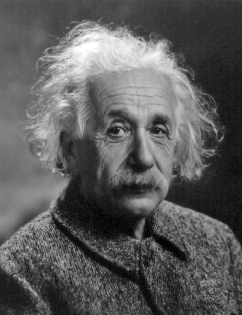 Albert Einstein - the vegetarian physicist