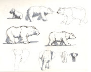 These polar bear drawings are pretty bad, but the elephant and capybara ones .