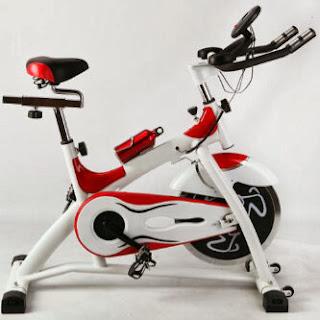 Spinning Bike Racing White