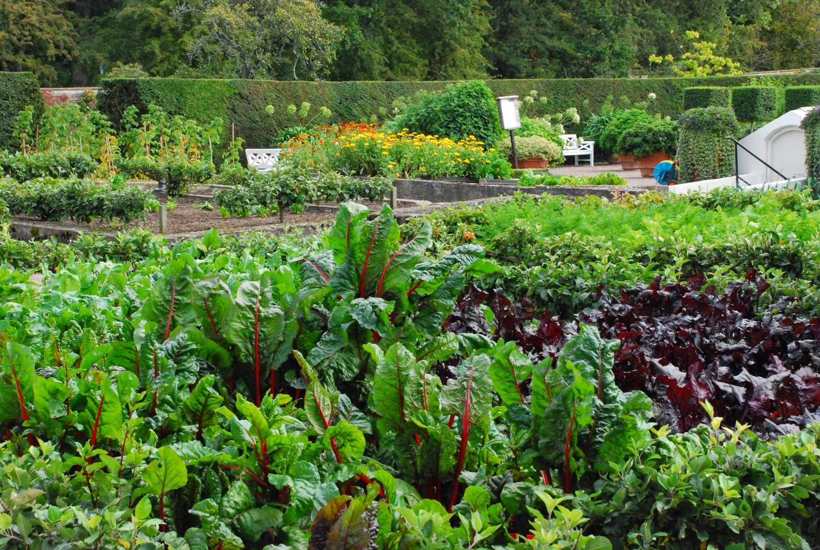 Den passionerade trädgårdsturisten: sofiero slott öppnar nu ...