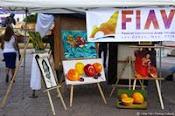 FIAV Los Cabos 2014