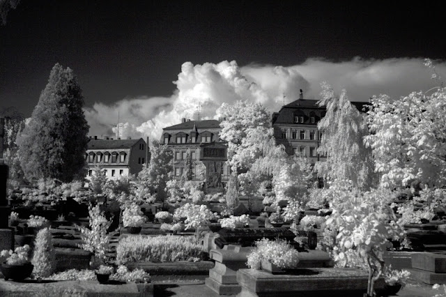 Johannisfriedhof Infrared photography