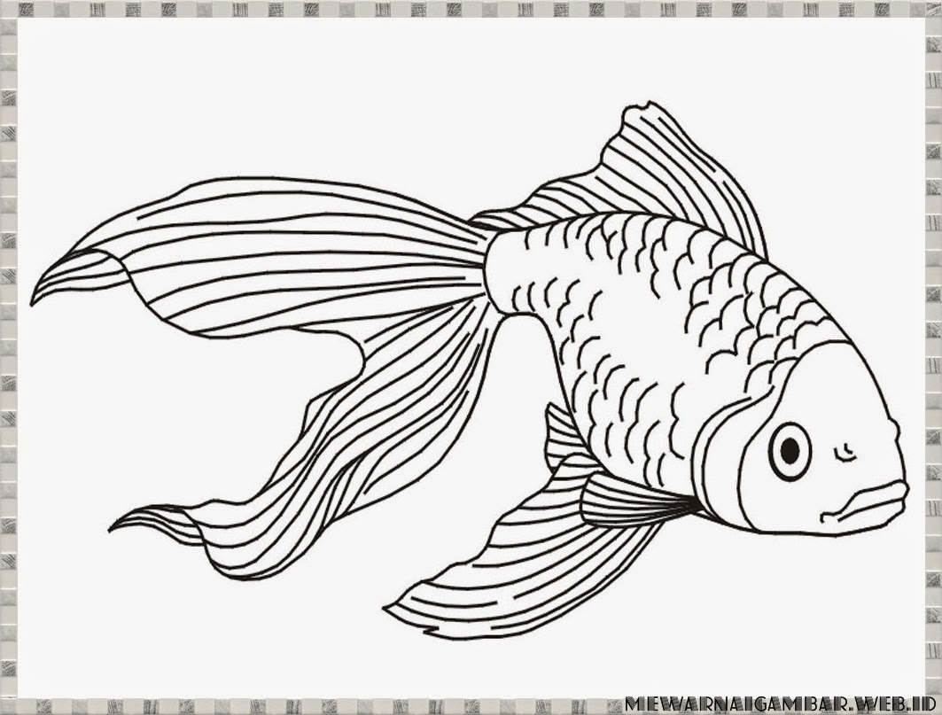 Gambar Mewarnai Ikan Mas