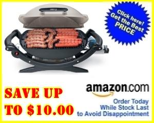weber q 100 gas grill weber q100 best price. Black Bedroom Furniture Sets. Home Design Ideas