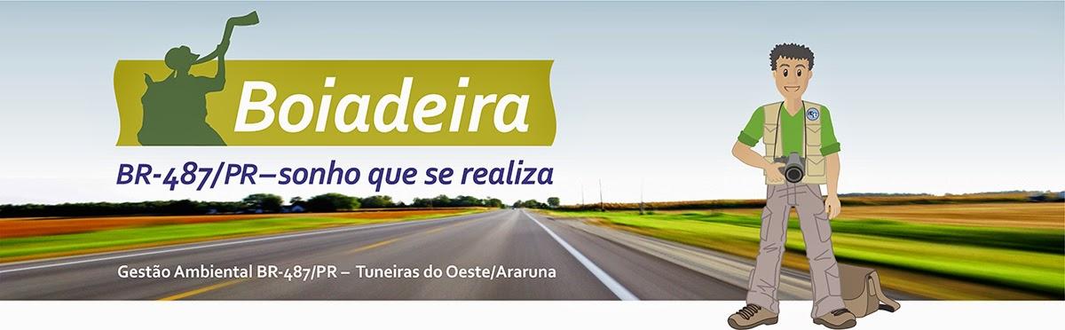 Estrada Boiadeira (BR 487/PR)