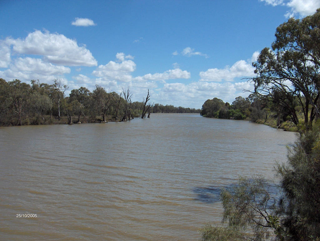 the river murray australia Murray river, principal river of australia and main stream of the murray-darling  basin it flows some 1,570 miles (2,530 km) across southeastern australia from.