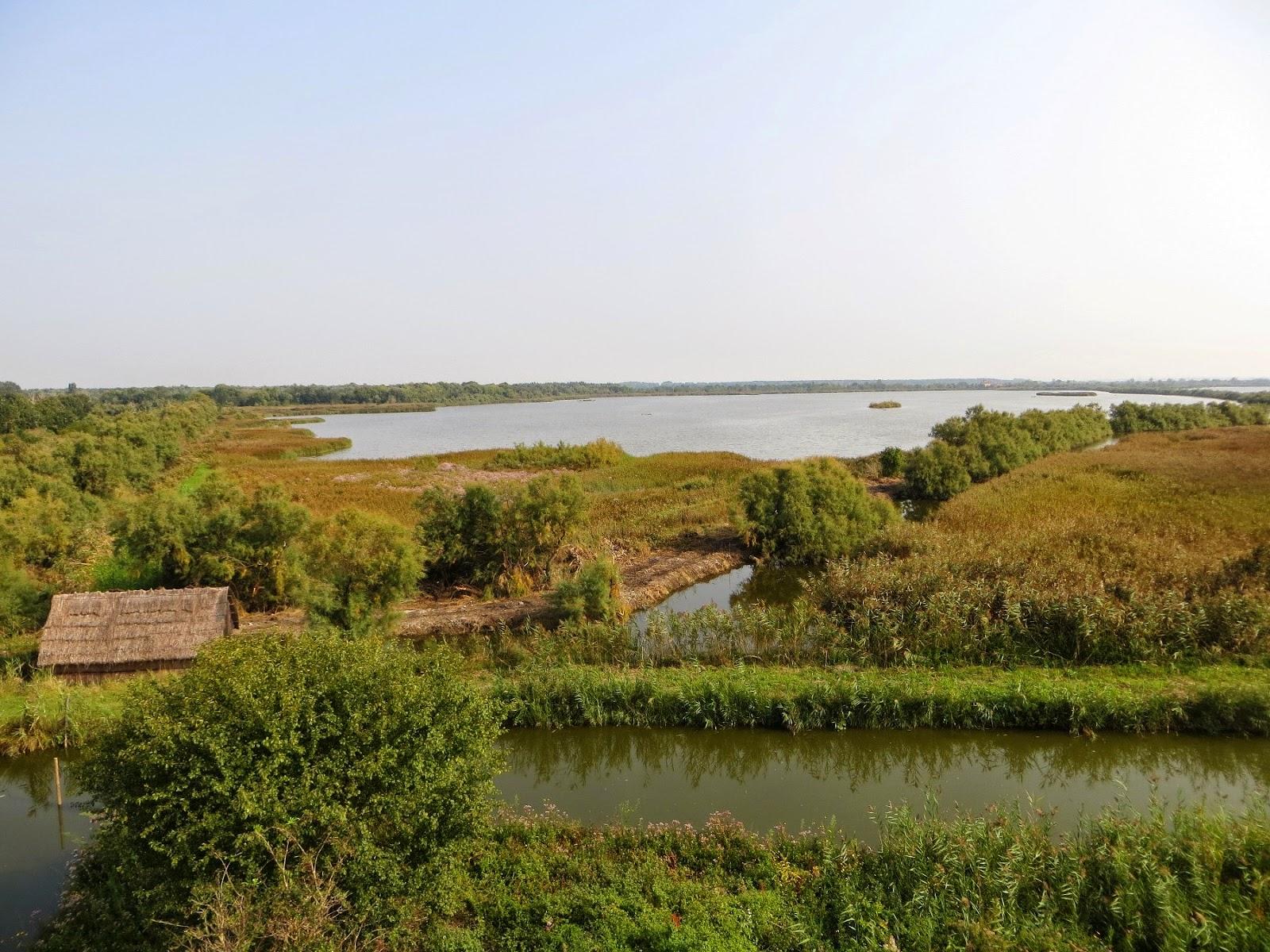 oasi wwf valle averto laguna di venezia