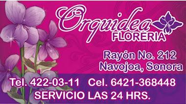 Orquídea FLORERÍA