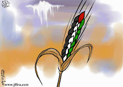 #Palestina Livre #FreePalestine