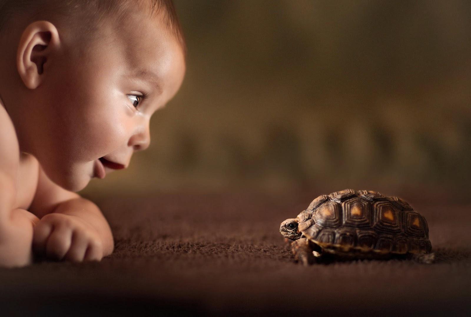 Niño & tortuga