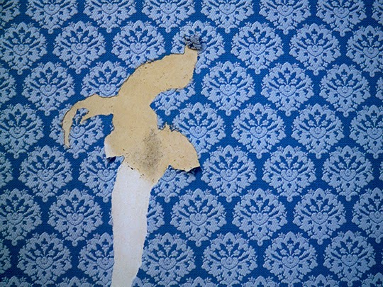 torn wallpaper, blue, pattern, photography, photo, suburbia,